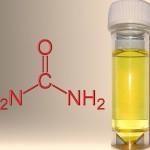 hydrogen-from-urine