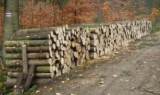 stos-drewna