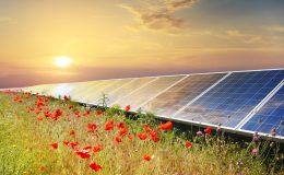 Gospodarstwo rolne zasilane darmową energią słoneczną