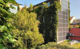 Ekologiczny (zeroenergetyczny) hotel w Wiedniu