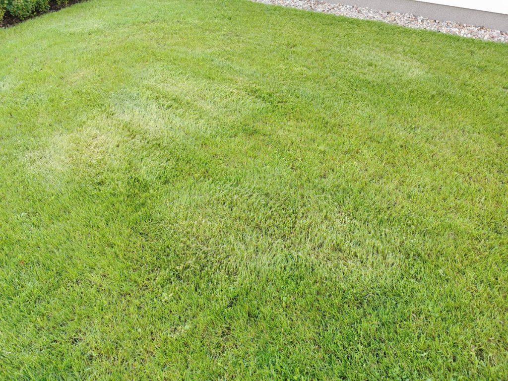 Skoszony trawnik.